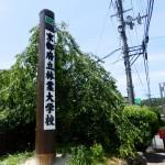 【林業大学校経営高度化コースⅠ 第3回】(7/13)
