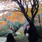 【インターン生奮闘記:まちあるきと中川八幡宮ライトアップ鑑賞会!】(11/23)