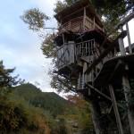 【Tree Castle】(11/13)