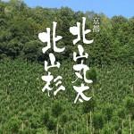 【webディレクション事例:京都北山丸太生産協同組合様】