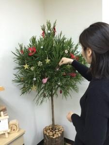 北山杉クリスマスツリー(Step2)