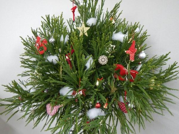 北山杉クリスマスツリー(完成)