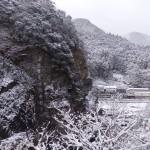 冬の色~ちいきのgraffiti~